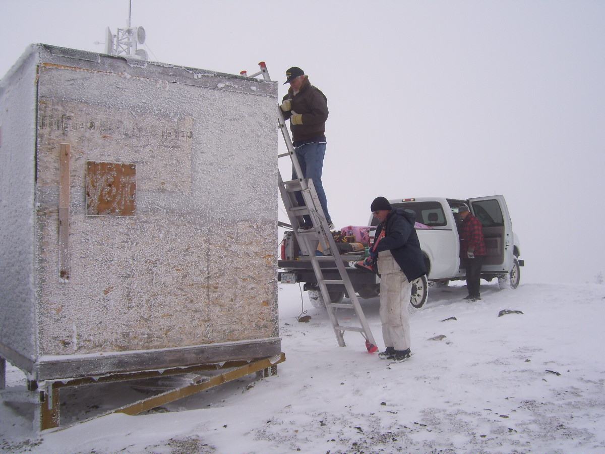 Bill, half way up the ladder.